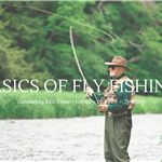 Learn the Basics of Fly Fishing